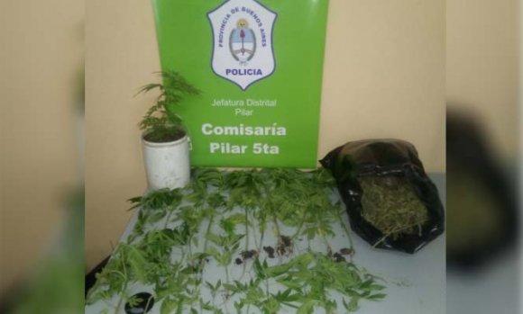 Denunció a su pareja por violencia pero la detuvieron por plantar marihuana